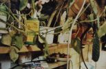 Broučkářova pracovna. 2002 (3)-brouckarova_pracovna_2002_3.jpg