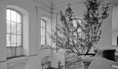 Charlie Citron, Blue Tree, convent, Fungus - průzkum místa, 1994-charlie_citron_blue_tree_convent_fungus_-_pruzkum_mista_1994_photo_d.s.jpg