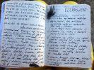 Deník krávy – Book of Cows. work in progress-denik-kravy-page-15.jpg