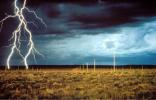 Walter De Maria, The Lightning Field, 1977. © The Estate of Walter De Maria.