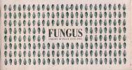obálka katalogu Fungus – průzkum místa-catalog-0-cover-fungus.jpg