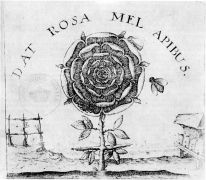 Johann Thedore deBry: DAT ROSA MEL APIBUS, Johann Thedore deBry, 1598 — Detail from the titlepage of Robert Fludd's Summum Bonum, Frankfurt 1629 (1995). Fotograf: archiv